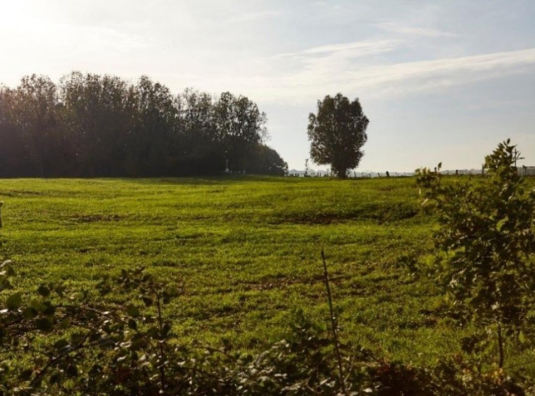 Bellewaarde Ridge in Zillebeke, Ieper
